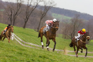 Cheshire Point-to-Point Races