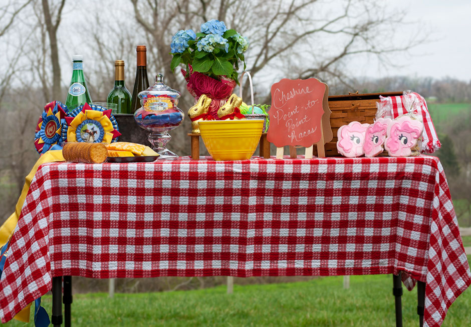 Cheshire-Point-to-Point-picnic