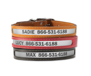 Equestrian holiday wishlist: Orvis Reflective Leather Dog Collar
