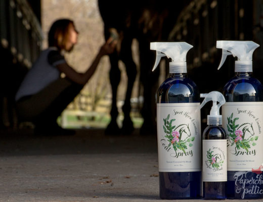 Sport Horse Essentials Package