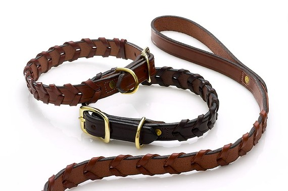 Equestrian-Inspired Dog Collars: Devonhill Laced Leather Sporting Collar