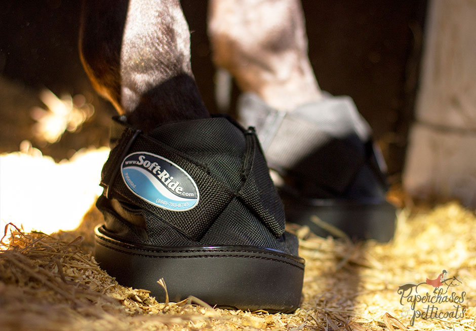 Soft-Ride Equine Comfort Boots