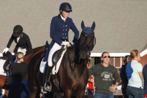 Equestrian support system
