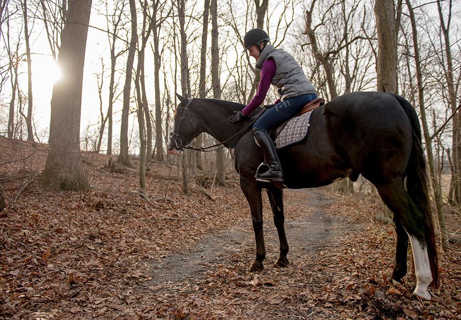 Review Aztec Diamond Equestrian Technical Stretch